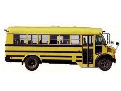 Автобус картинка