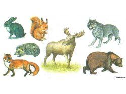 Картинки дикие и домашние животные