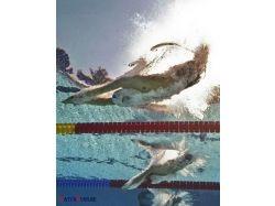 Плавание фото