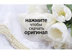 Живопись картинки красивые цветы винтажные