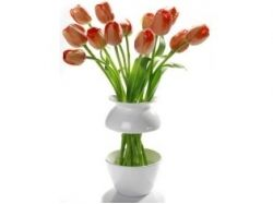 Напольные вазы фото с цветами