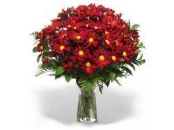 Мужские цветы фото