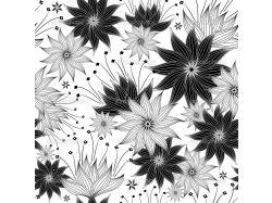 Цветы картинки рисованные черно белые