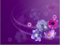 Картинки цветов на заставку