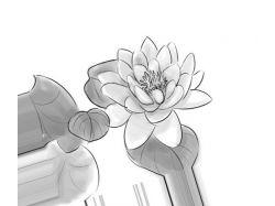 Картинки цветов нарисованные карандашом