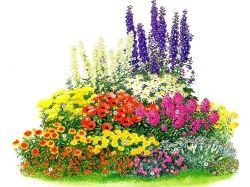 Детские картинки цветы для оформления