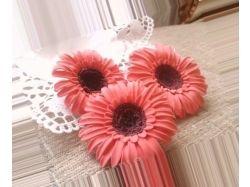 Новые цветы фото