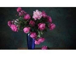 Посмотреть фото цветы