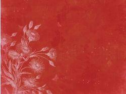 Цветы на красном фоне картинки