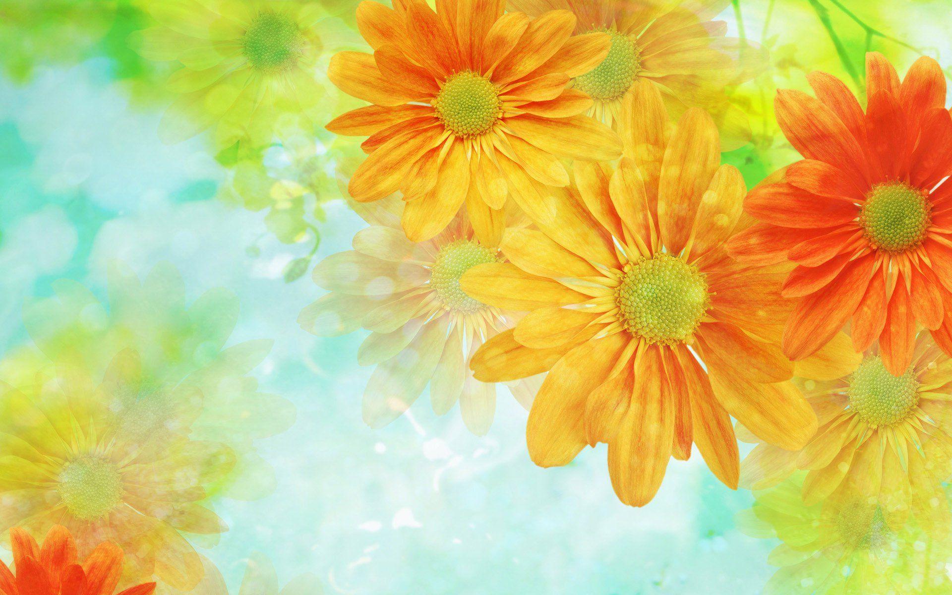 Скачать бесплатно картинки букеты живых цветов 14