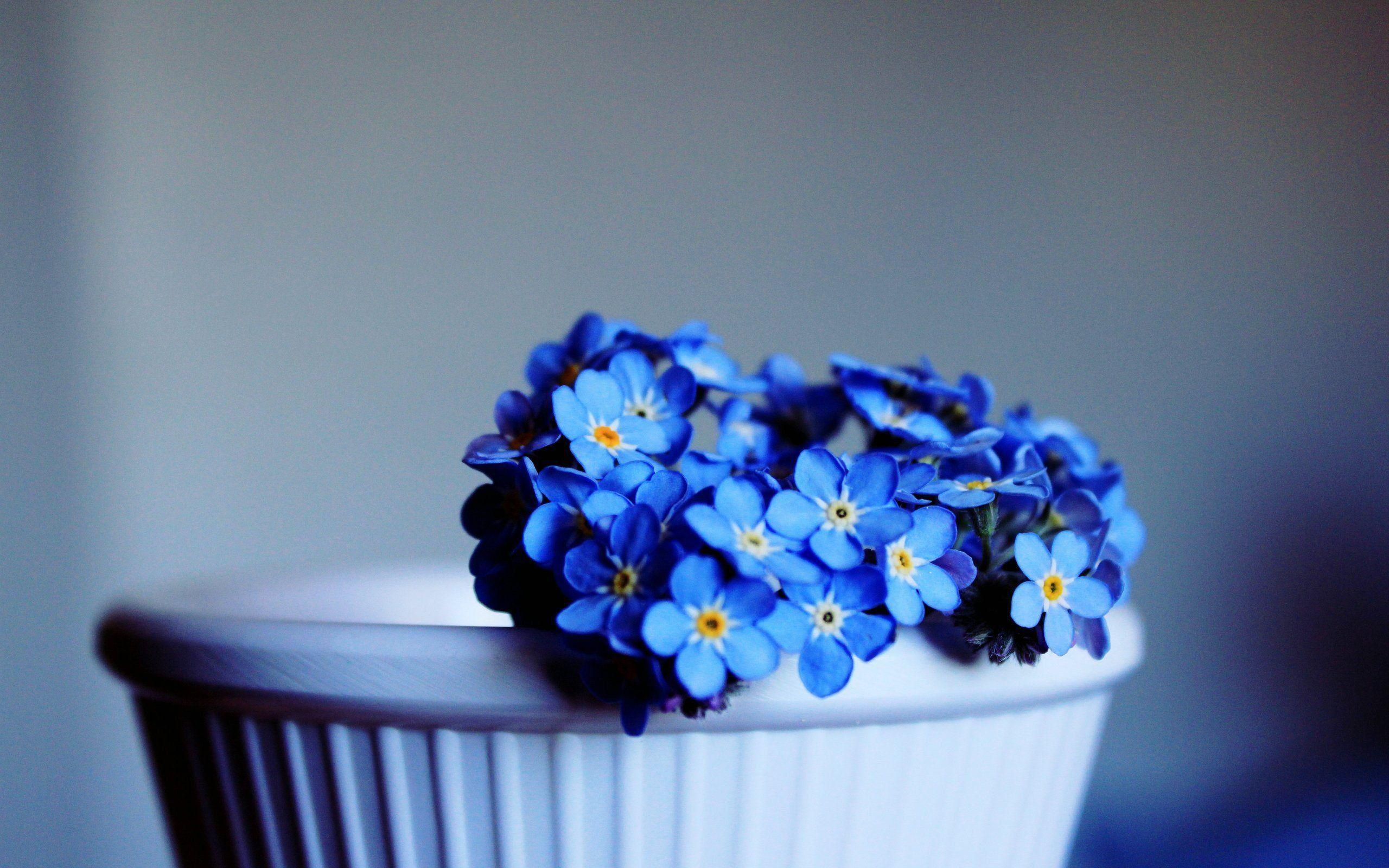 Картинки связанные с синим цветом