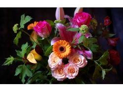 Цветы картинки в хорошем качестве