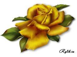Картинки букетов цветов красивые нарисованные