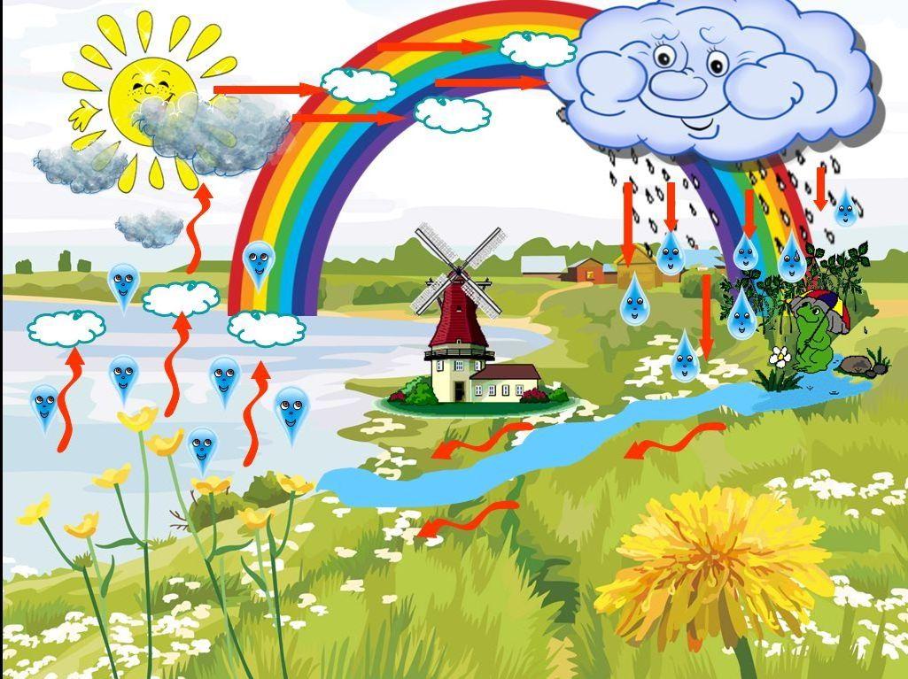 Мир воды картинки для детей