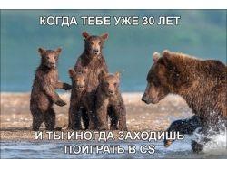 Фото приколы онлайн 9