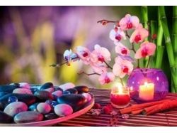 Картинки орхидеи на рабочий стол