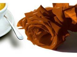 Поделки из шоколада