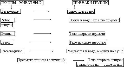 которых группы животных 3 класс окружающий мир таблица термобелье