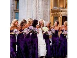 Свадьба в фиолетовом цвете фото
