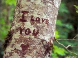 Ты моя любовь картинки