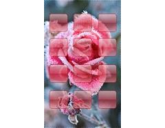 Красивые картинки на телефон 240х400