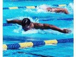 Плавание картинки