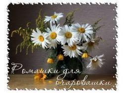 Фото цветы любовь