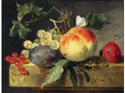 Натюрморт с фруктами для детей 4