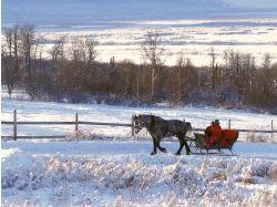 Картинки зима рисованные