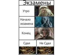 Экзамены картинки