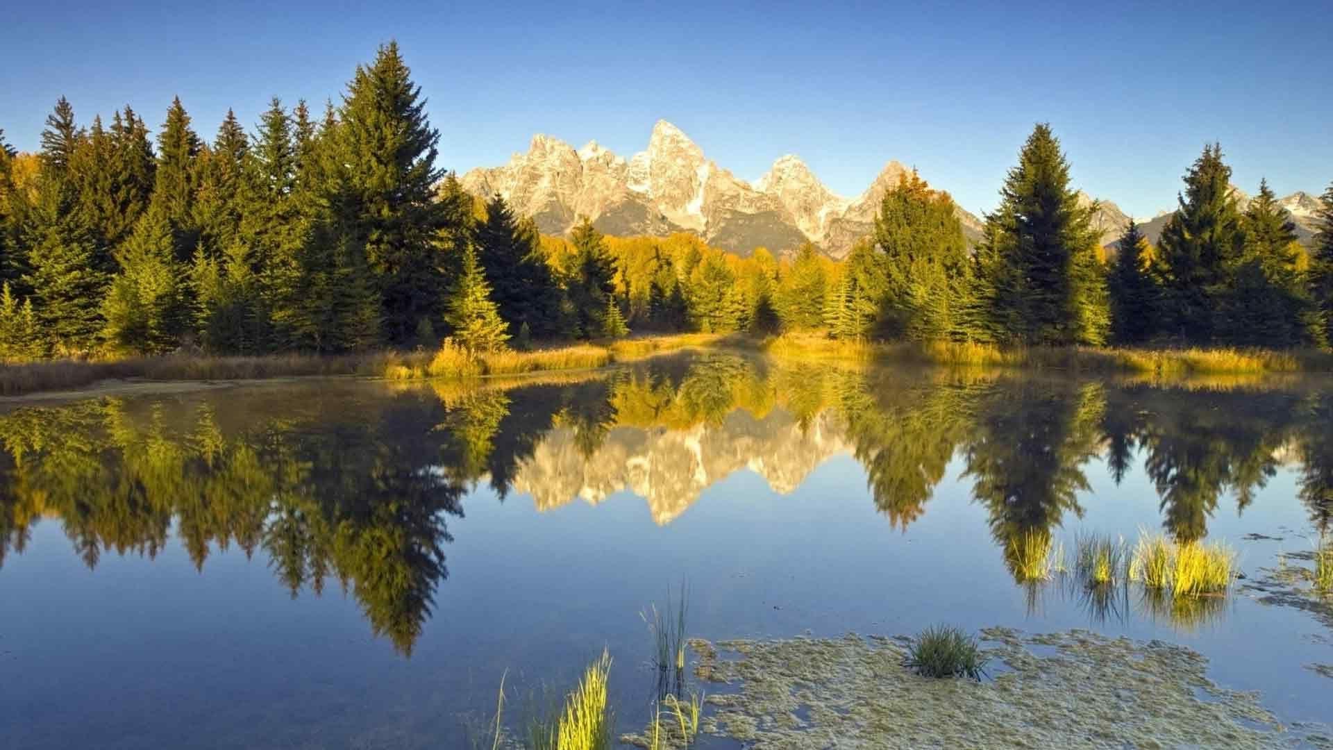 Золотое озеро без регистрации