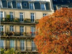 Фото парижа осенью