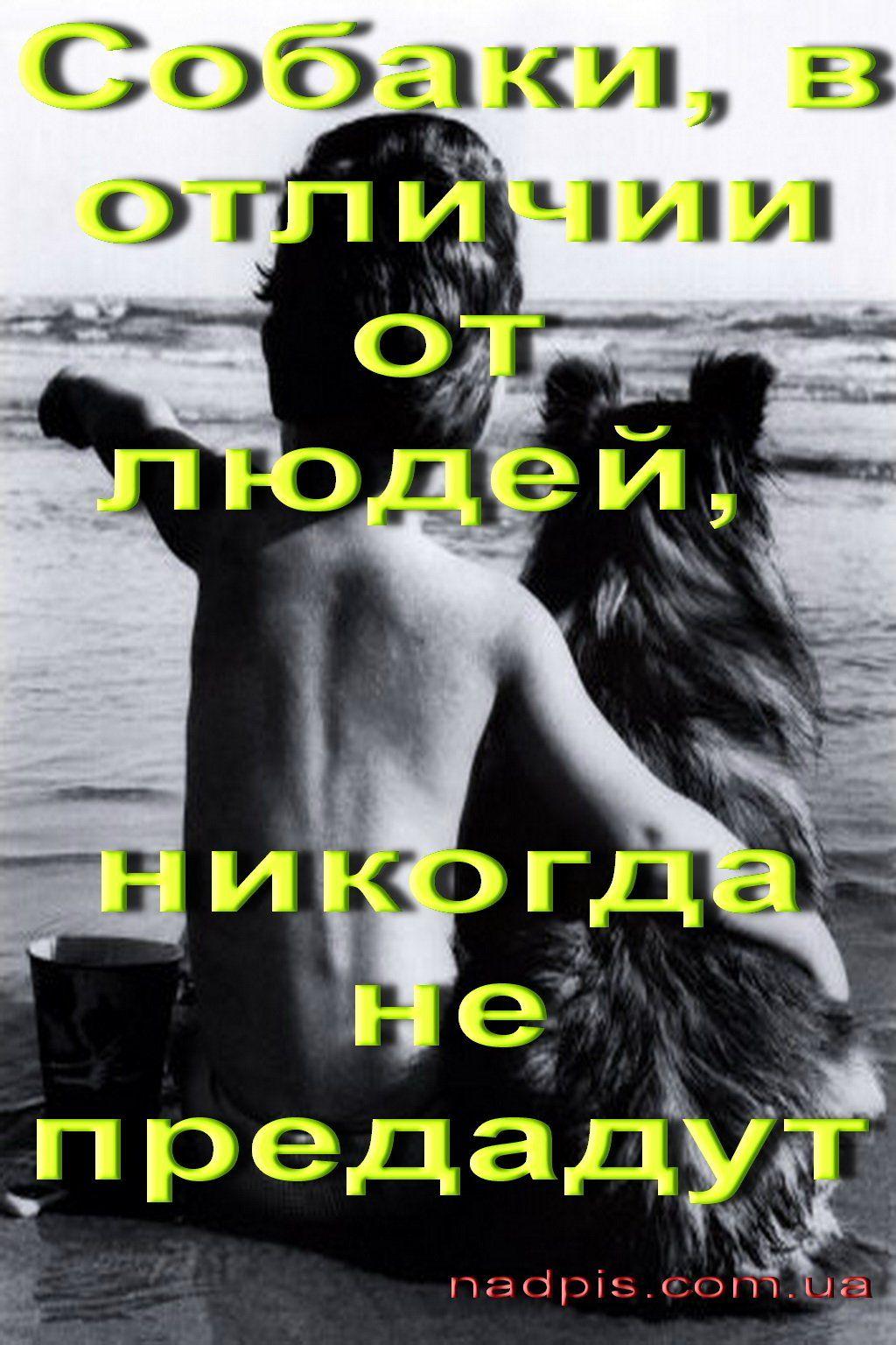 Картинки предательство с надписью, день российской почты