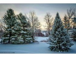 Зима в калининграде фото