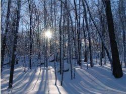 Фото на раб стол зима