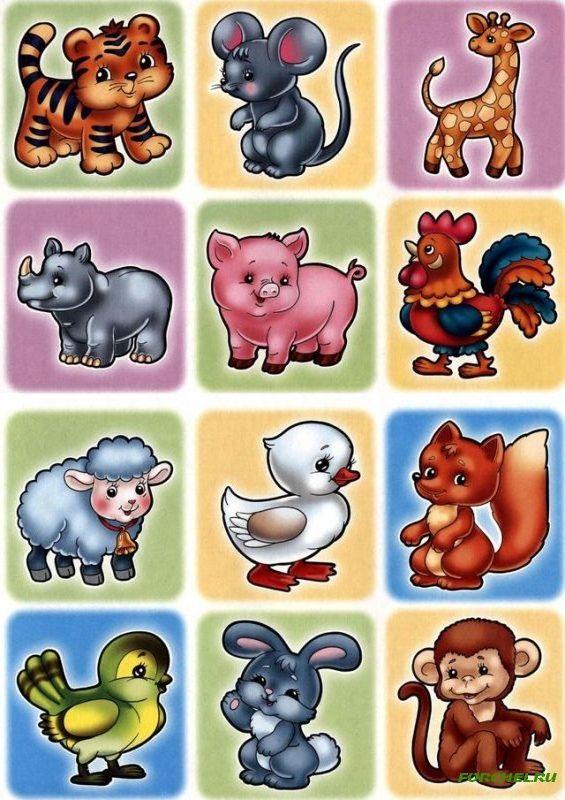 Картинки маркировка для детского сада скачать бесплатно 9