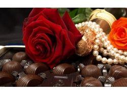 Цветы фото роза