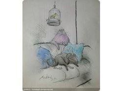 Рисунки кошек прикольные