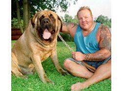 Самые большие животные в мире фото
