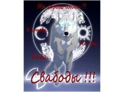 Картинки волков на аву 1