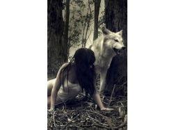 Картинки волков на аву 2