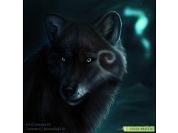 Картинки волков на аву 4