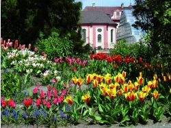 Красивые места германии фото