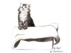Рисунок кота карандашом 2