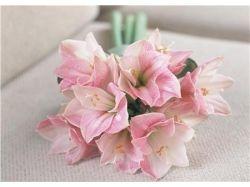 Цветы букеты фотографии 6