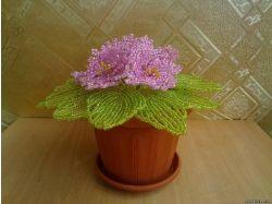 Цветы васильки фото 5