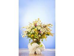 Цветы васильки фото 8