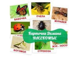 Картинки насекомых для детей 2