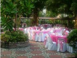 Розовая свадьба фото 5