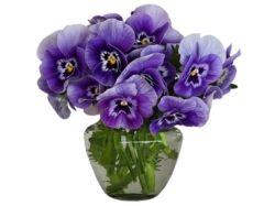 Смайлики цветы 6